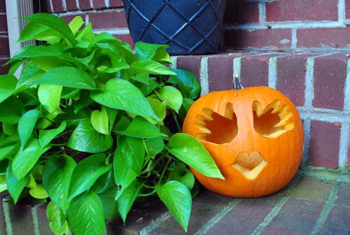 Baby S First Halloween A Little Handprint Pumpkin
