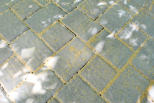 See, My Wet Crack Sand (wait, That Sounds Gross) Did A Lot Of Sliding  Between The Pavers U2013 Making Things Not So Pretty On Top.