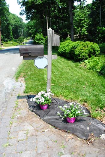 Weed Blocking Fabric & New Flowers For Our Mailbox