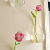 Hanging Floating Vases