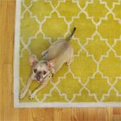 Picking The Right Sized Rug