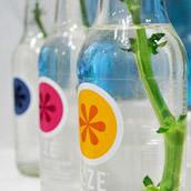 Repurposing Cute Soda Bottles