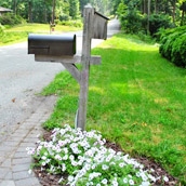 Cheering Up Our Mailbox