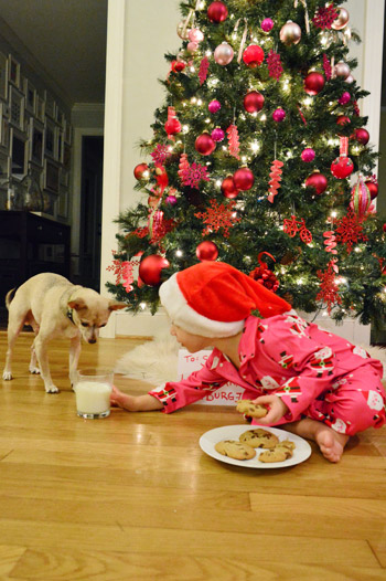 Christmas card photo ideas that you can do yourself young house love clara loved the fact that burger was so interested in the milk more cookies for me that she constantly tried to invite him to drink more of it solutioingenieria Image collections