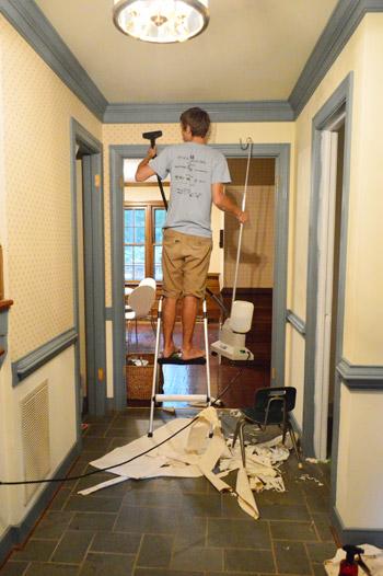 how to remove wallpaper with a clothes steamer