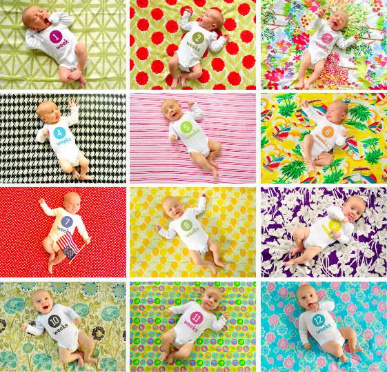 d18f6087c4c4 Weekly Baby Pictures  How We Take Them   Photoshop The Number On The ...