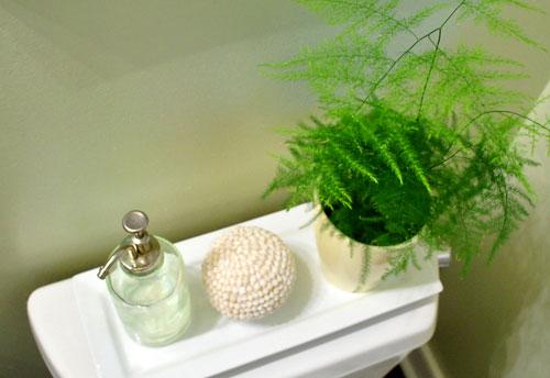 Asparagus In The Bathroom