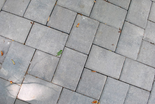 So we bit the bullet swallowed our pride and bought a bucket of polymeric sand at Loweu0027s for about $30. It technically should have only been enough to ... & How To Use Polymeric Sand To Block Weeds In Our Paver Patio | Young ...