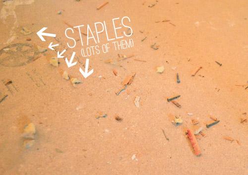 carpet staples in subfloor