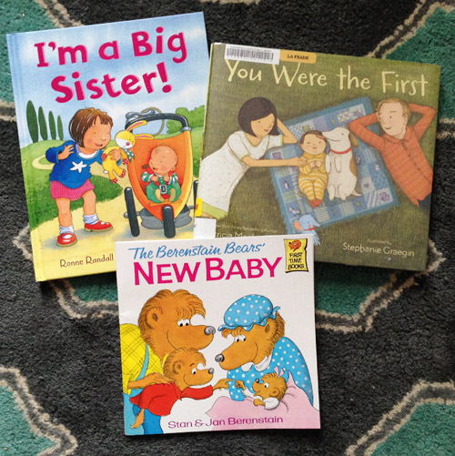 big sister book recommendations